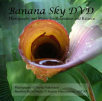 Banana Sky DVD: Photography and Music for Relaxation and Balance for Caregivers on http://TreasureYourLifeNow.com