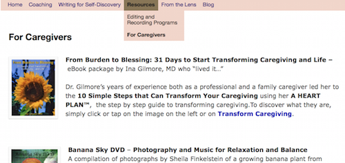 Screen shot of Resources Drop Down Menu on http://TreasureYourLifeNow.com website
