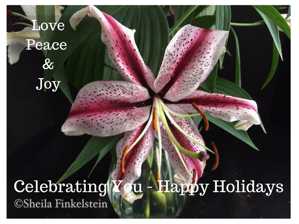 Candy Cane Lily - Celebrating You
