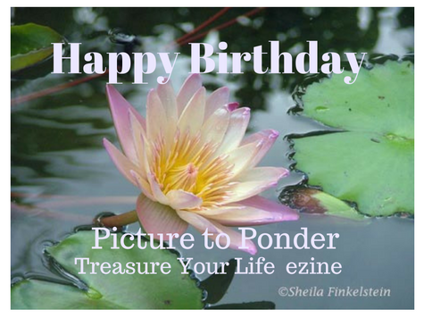 TreasureYourLifeNow.com/blog wishes Happy 12th Birthday to Picture to Ponder / Treasure Your Life Now ezine