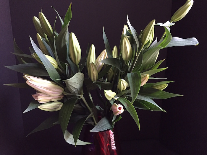 http://Treasureyourlifenow.com - Candy stripe lilies bouquet mostly buds
