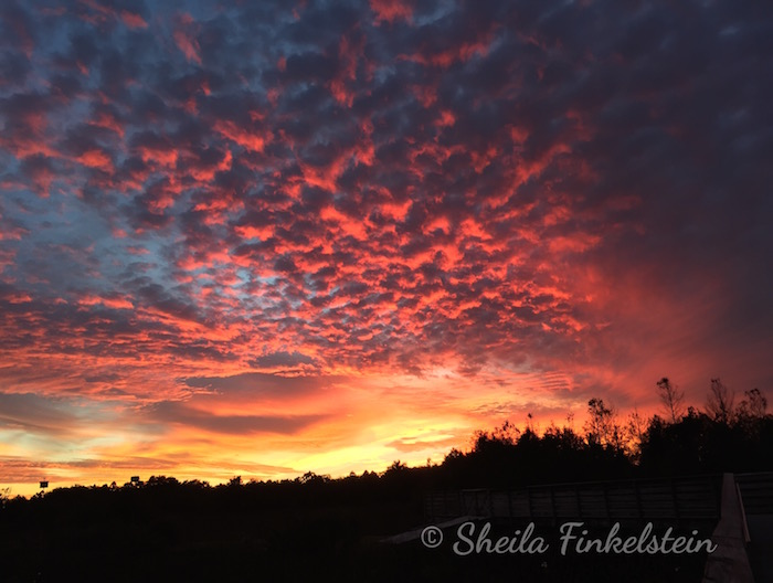 Fiery Sunset Clouds in Green Cay Wetlands posted on http://TreasureYourLifeNow.com/blog